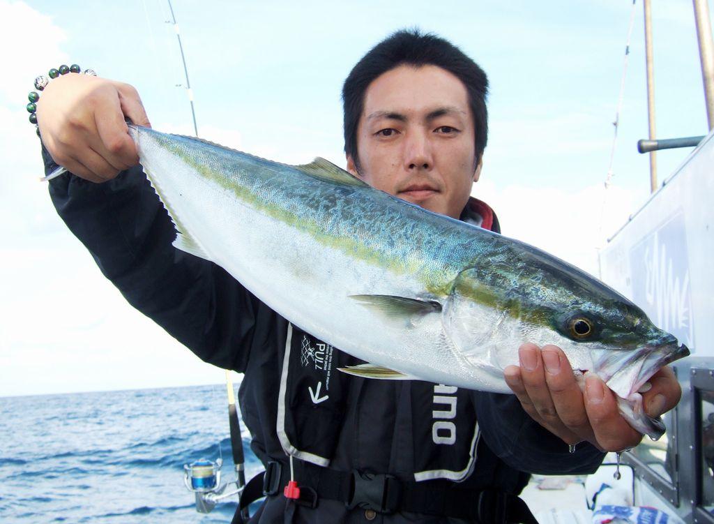 仙台湾ワラサ2