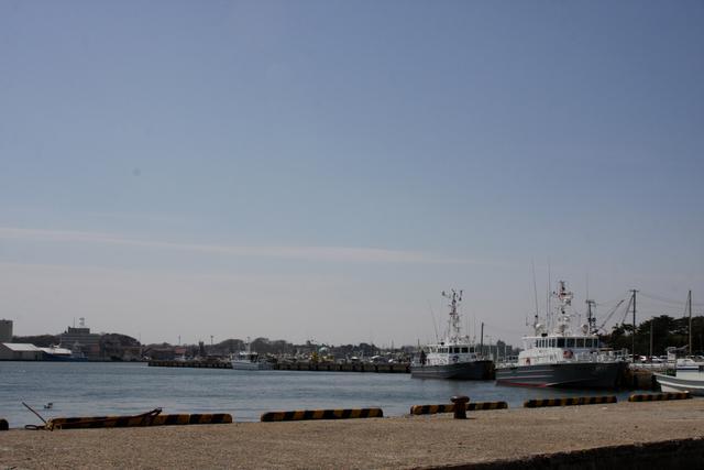 魚市場周辺
