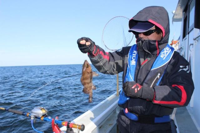 メバル釣果