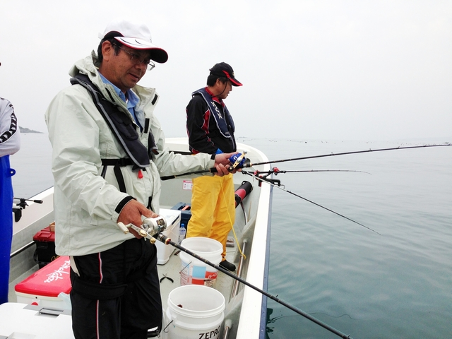 歌津湾カレイ