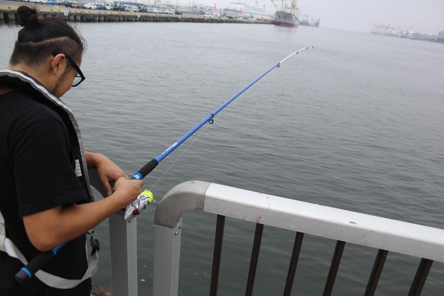 新港サビキ釣り