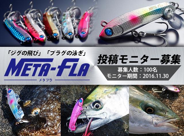 メタフラモニタ_1.jpg