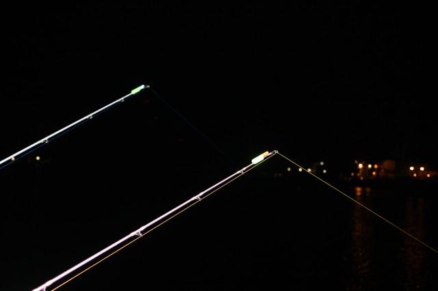 竿先ライト