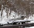 奥入瀬川水系